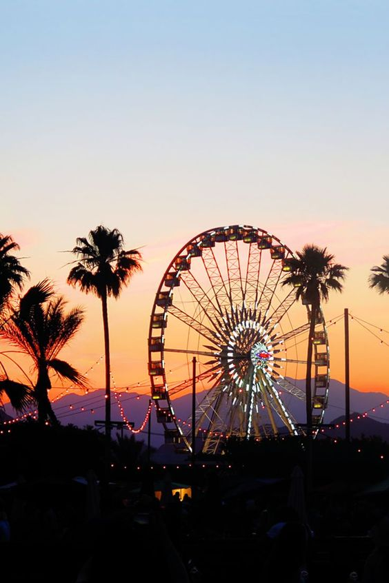 My first experience at Coachella